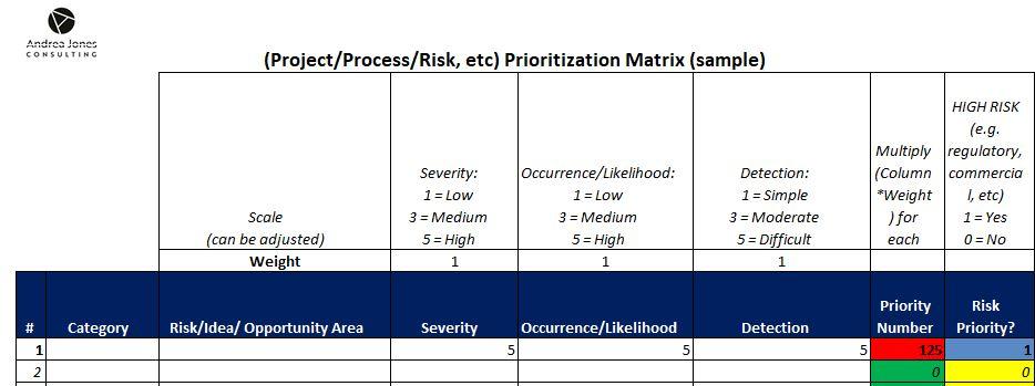ERP Risk Log
